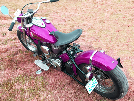 purple bobber